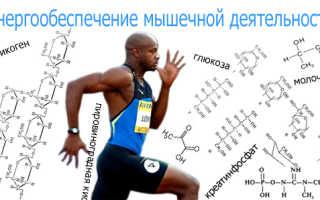 Типы физической нагрузки