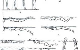 Техника плавания баттерфляем для начинающих – как правильно плавать дельфином, движения ног и рук, особенности стиля