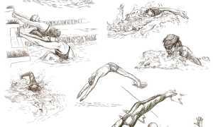 Все виды плавания: описание техник и интересные факты