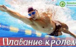 Баттерфляй сухое плавание