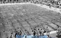 История плавания на олимпийских играх