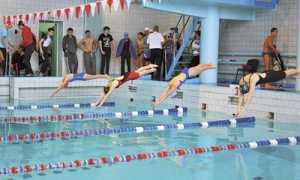 Олимпийские дистанции по плаванию