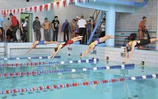Дистанции в плавании на олимпийских играх