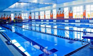 Чем очищают воду в бассейне