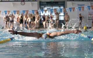Как плавать чтобы похудела спина